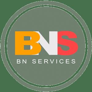 BNS Logotype